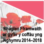 Rhaglen Fframwaith1