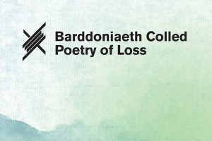 poetry of loss barddoniaeth colled