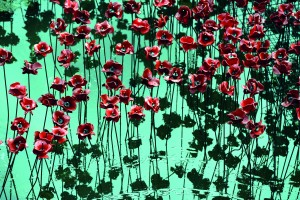 Poppies: Wave and Weeping Window (2016) Image credit: Wave at Yorkshire Sculpture Park, September 2015 © Getty